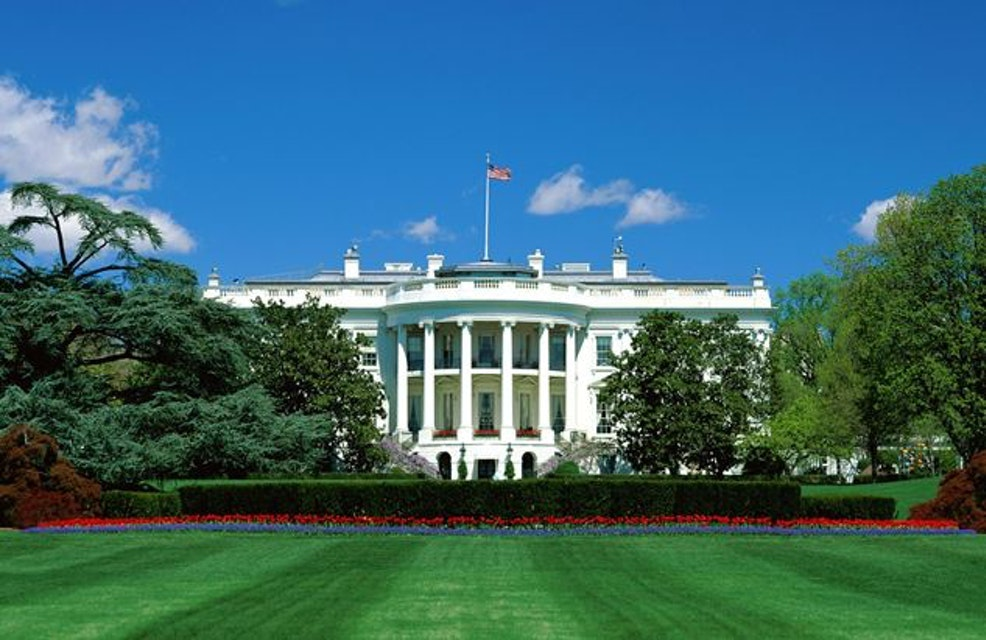 Painting The White House - Someone Has To Do It!