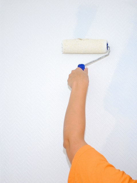 What To Expect From Professional Painters in Washington, DC